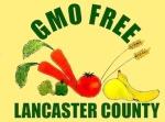 GMO_FREE_big_logo